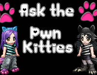 Ask The Pwn Kitties